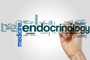 эндокринология в корее