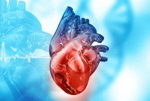 кардиология в корее
